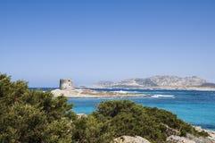 La Pelosa Stintino Sardinia island Italy. Summer Stock Image