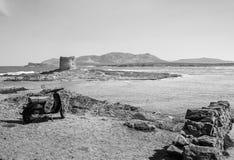 La-pelosastrand in het eiland van Sardinige, Italië royalty-vrije stock afbeelding