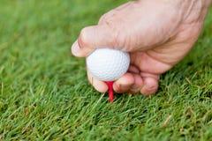 La pelota de golf y el hierro en hierba verde detallan macro Foto de archivo libre de regalías