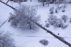 La pelouse dans la ville après chutes de neige, Pologne Images stock