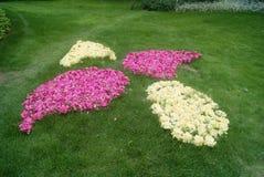 La pelouse et la décoration de fleurs Photos libres de droits