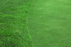 La pelouse verte un terrain de golf photographie stock