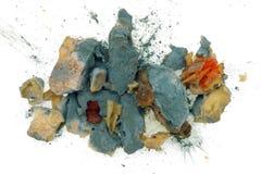 La penicillina blu della muffa dell'alimento Immagine Stock