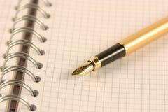 La penna su un scrittura-libro fotografia stock libera da diritti