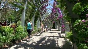 La pentola dalla gente cammina alla passeggiata in parchi del sud della Banca a Brisbane stock footage
