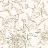 La peonia fiorisce la seppia senza cuciture di beige di marrone del modello Fotografia Stock Libera da Diritti