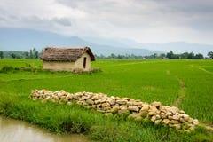 La pequeña casa rodeada por el arroz coloca en el valle de Deukhuri Foto de archivo libre de regalías