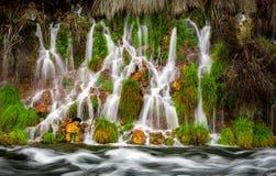 La pequeña cascada de la primavera fluye en una pequeña corriente Fotos de archivo libres de regalías