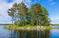 La pequeña isla con los pinos en el lago Ladoga Imagen de archivo libre de regalías