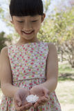 La pequeña muchacha sonriente que miraba abajo una flor de cerezo en ella ahuecó las manos en un parque en primavera Foto de archivo libre de regalías