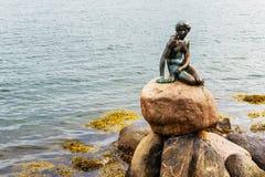 La pequeña sirena famosa statueDen Lille Havfrue de Copenhague, Dinamarca foto de archivo