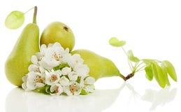 Peras y flor Imagenes de archivo