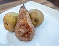 La pera fusa e fresca fruttifica su un piatto bianco fotografia stock libera da diritti