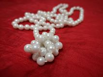 La perla bianca si trova su fondo rosso immagine stock
