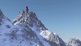 La persona en el top de la montaña stock de ilustración