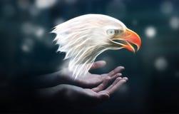 La persona que llevaba a cabo fractal puso en peligro renderin del ejemplo 3D del águila Fotografía de archivo