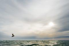 La persona que practica surf que salta en la puesta del sol Fotos de archivo libres de regalías