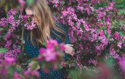 La persona sta in mela magica rosa di fioritura Fotografie Stock Libere da Diritti