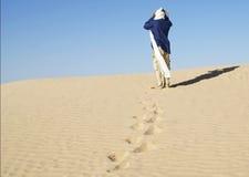 La personne dans le désert Photos libres de droits