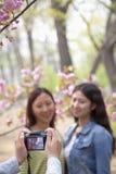 La personne prenant une photo de deux jeunes femmes dehors en parc parmi le ressort fleurit Photographie stock libre de droits