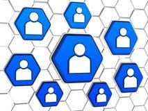 La personne signe dedans des hexagones bleus Photos stock