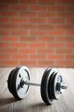 La pesa de gimnasia del hierro Fotos de archivo