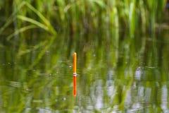 La pesca del galleggiante sta sulla superficie del lago fotografia stock libera da diritti