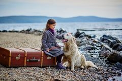 La petite belle fille marche sur la plage avec le chien, chien d'arrêt Image libre de droits