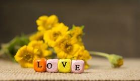 La petite chose a appelé l'amour images libres de droits