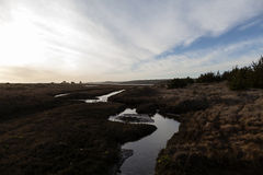 La petite crique dans l'herbe débarque près de la mer Photos stock
