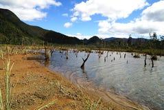 La petite ferme d'est de lac Image libre de droits