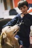 La petite fille à la maison avec son chien de golden retriever ont l'affection Images libres de droits