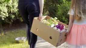 La petite fille aident sa mère à porter le cardbox avec des fleurs pour des seelings clips vidéos