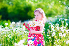 La petite fille avec de l'eau peut dans un domaine de fleur de marguerite Photo libre de droits