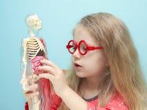 La petite fille avec des verres explorent la structure du corps humain Photo libre de droits