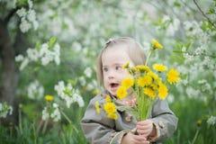 La petite fille avec la trisomie 21 tient un bouquet des pissenlits Image libre de droits