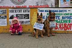La petite fille avec le chien avec la table traduite des amis russes de ` ne tirent pas ! ` dans l'action internationale pour la  Images stock