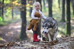 La petite fille avec le chien dans le jeu d'enfant de forêt d'automne avec le chien de traîneau et le nounours concernent l'air f Photographie stock