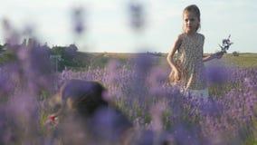 La petite fille avec son chien se tient dans un domaine des fleurs banque de vidéos