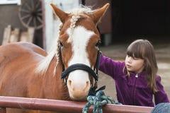 La petite fille caucasienne frotte le cheval brun photo libre de droits