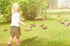 La petite fille dans les pigeons alimentants d'un stationnement Photos stock