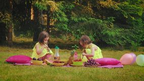 La petite fille deux dans des robes jouent au pique-nique clips vidéos