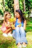 La petite fille donne des fleurs de maman photographie stock