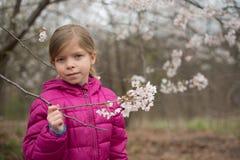 La petite fille est en parc de fleurs de cerisier Elle tient les fleurs de fleur Images stock