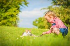 La petite fille et le chat jouent sur un pré vert au printemps beau d Photographie stock
