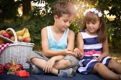 La petite fille heureuse et un garçon s'asseyent sur une couverture dans le pair Images stock