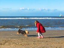 La petite fille joue avec le chien sur la plage Photo libre de droits