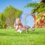 La petite fille joue avec un chat sur une herbe verte Photo stock