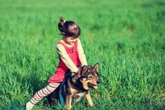 La petite fille joue avec un chien Images stock