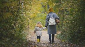 La petite fille joyeuse avec sa maman et nounours l'ours marche en parc d'automne, vue arrière Photographie stock libre de droits